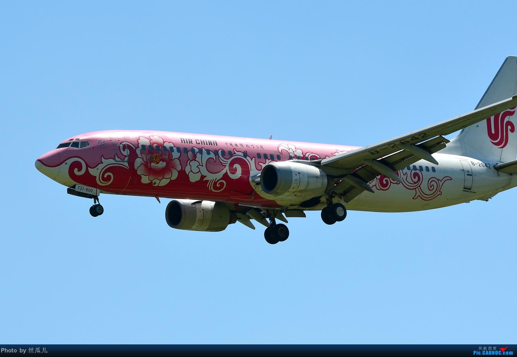 [原创]跟擦航牡丹机顶上了 BOEING 737-800 B-2642 中国北京首都机场