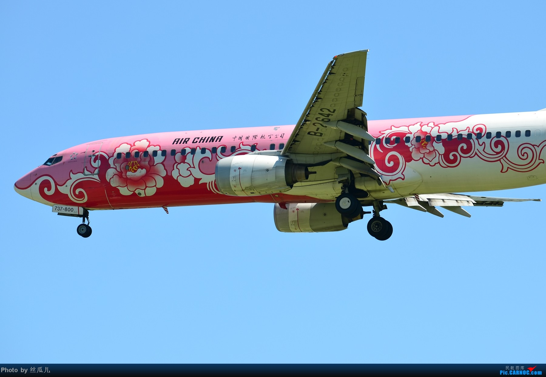Re:[原创]跟擦航牡丹机上了 BOEING 737-800 B-2642 中国北京首都机场