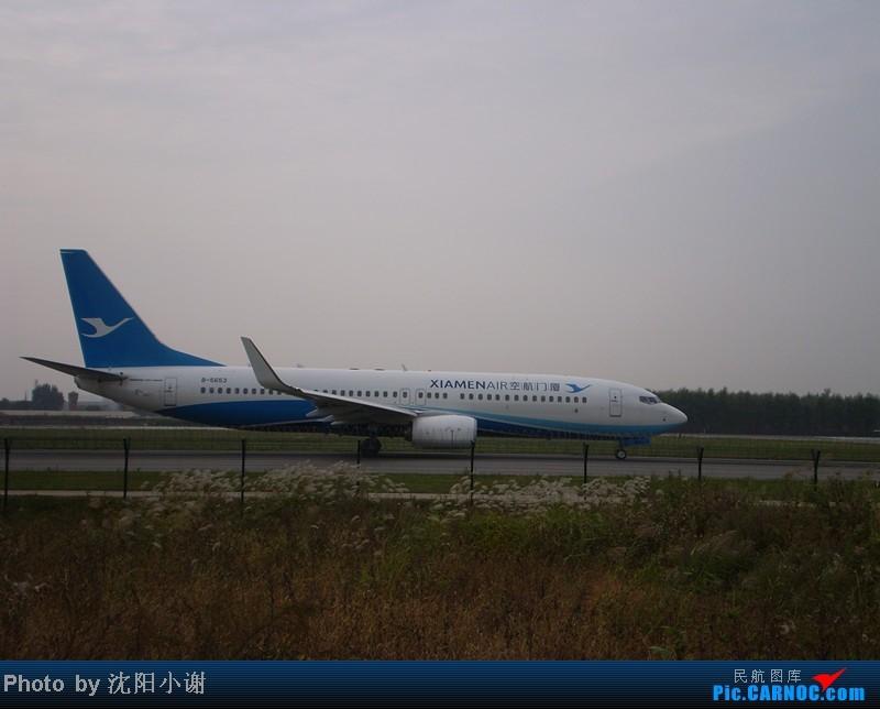 Re:[原创]沈阳桃仙机场 9月25日 9月26日拍摄 汉莎航空星空联盟A340 东方航空A300 BOEING 737-800 B-5653 中国沈阳桃仙机场
