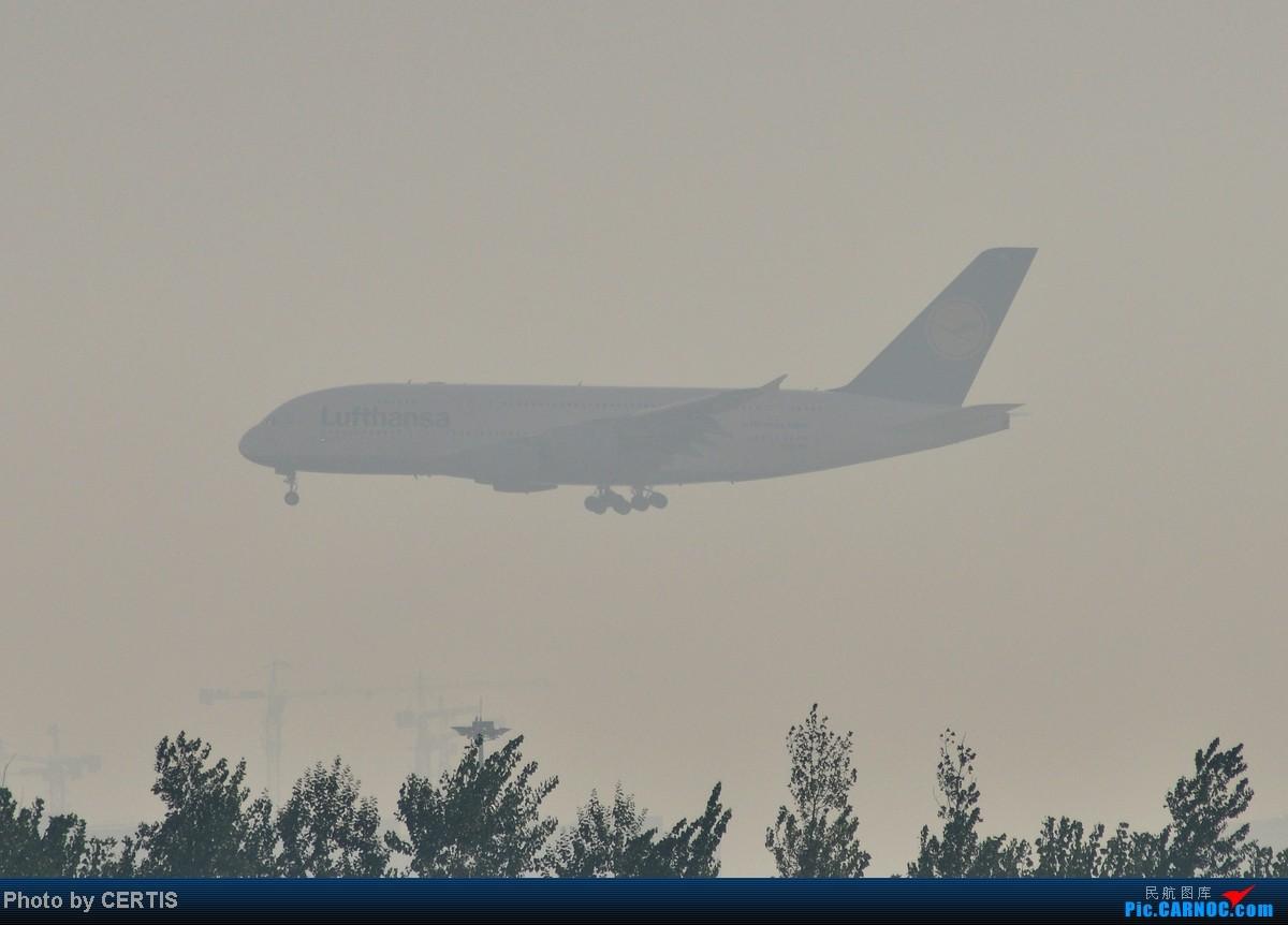 Re:[原创]10月3号拍机大杂烩 AIRBUS A380
