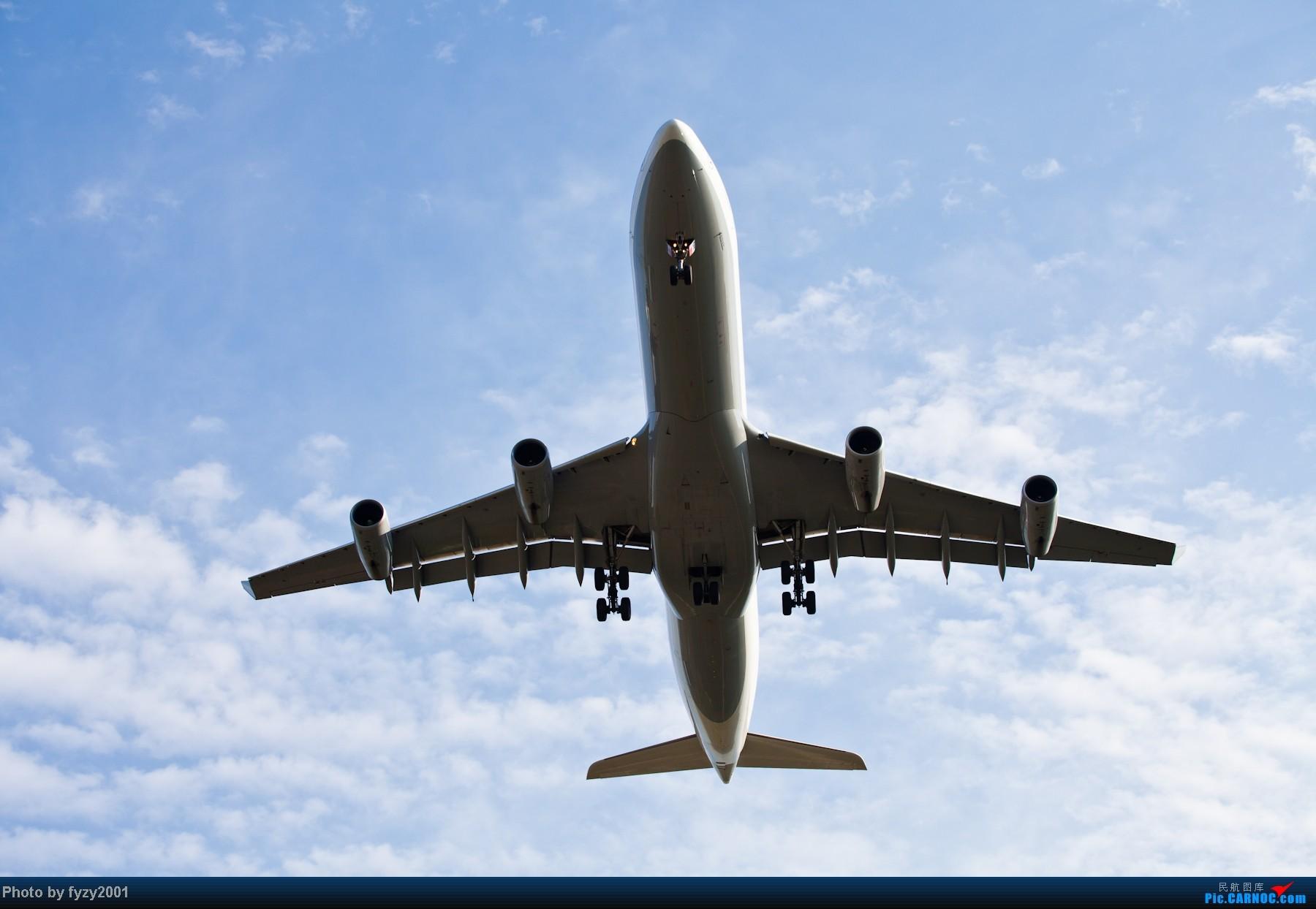 Re:[原创][无锡西站]长假PVG蹲守~~~~只发大图,多图杀猫~~~~ AIRBUS A340-300  中国上海浦东机场