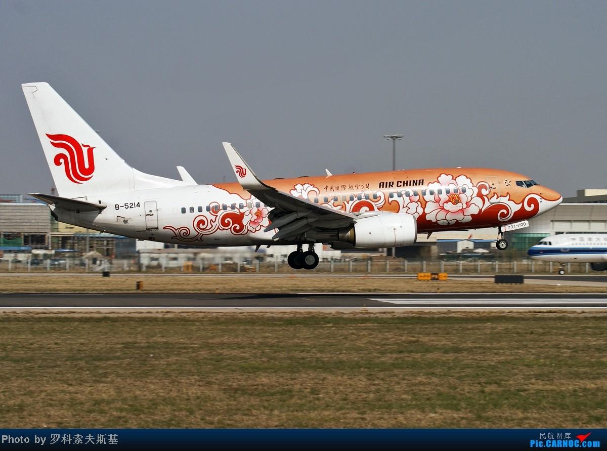 Re:[原创]【昆明的天空】B-5214在PEK18R降落一组 BOEING 737-700 B-5214 中国北京首都机场