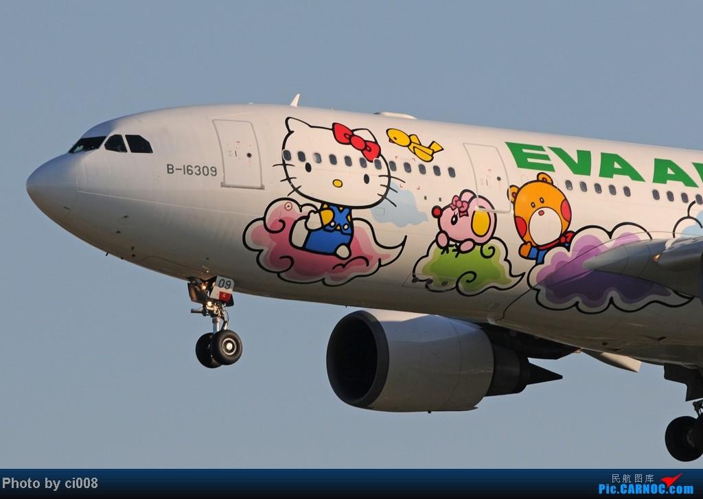Re:[原创]長 榮 航 空 五 大 招 財 貓 之 [ 雲 彩 貓 ] AIRBUS A330-200 B-16309 桃園(原中正)机场