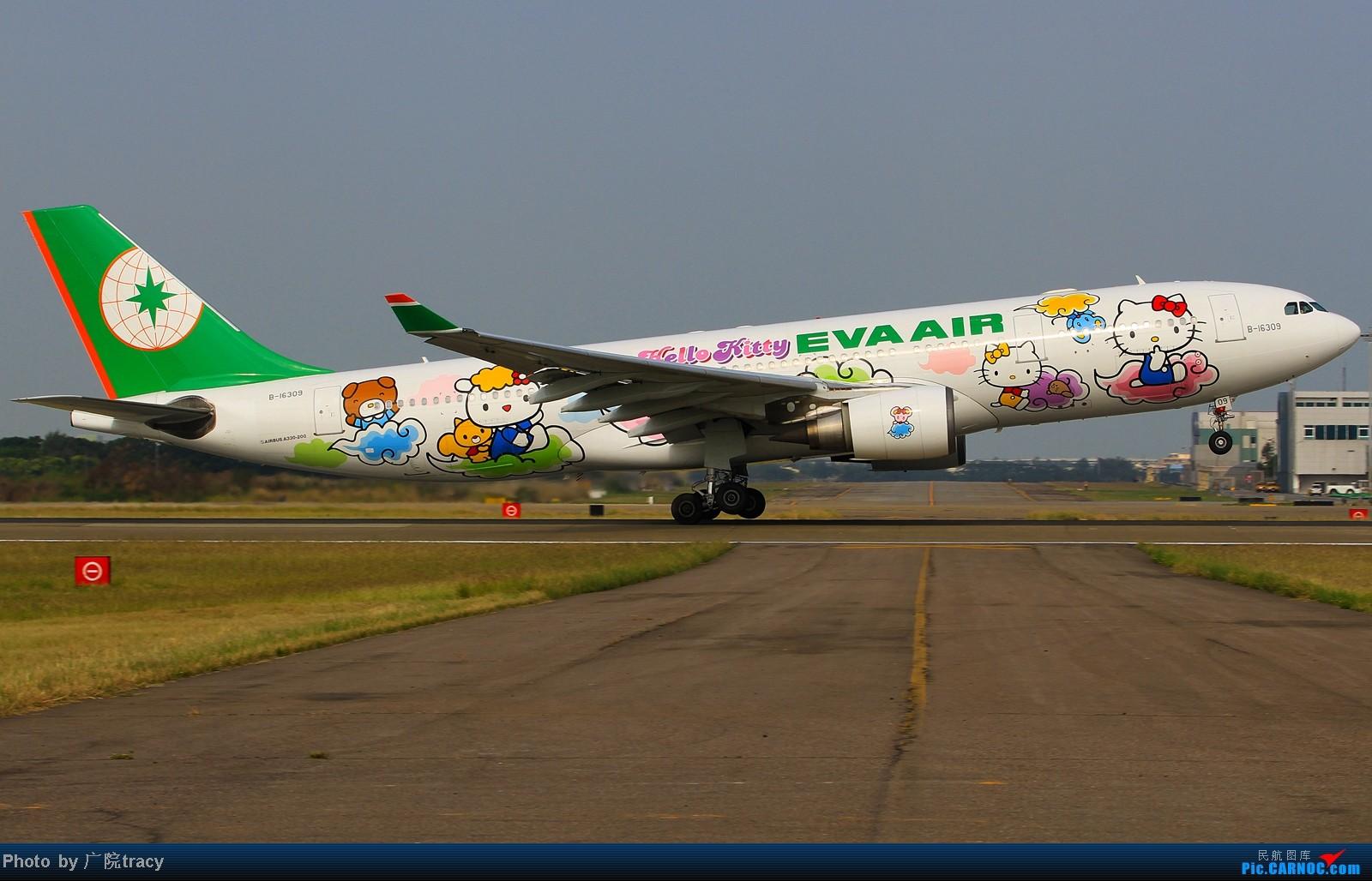 【廣院在台灣】台灣長榮航空公司!EVA AIR HELLO KITTY 現役彩繪航機 全數集合 多角度 AIRBUS A330-200 B-16309 中国桃园/桃園(原中正)机场