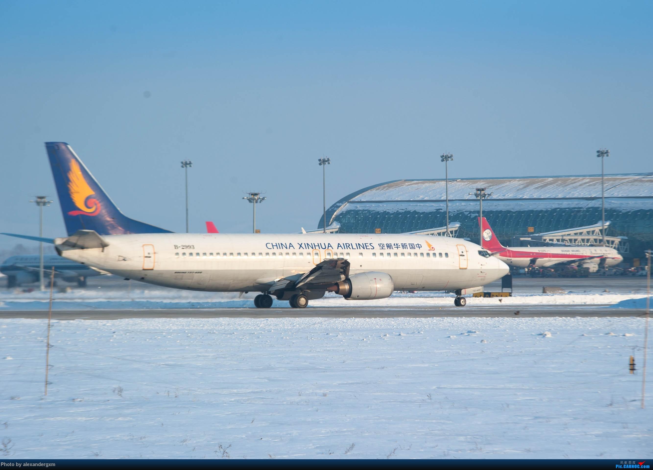 Re:[原创]【CGQ】今天零下30多度好像…… BOEING 737-400 B-2993 中国长春龙嘉国际机场