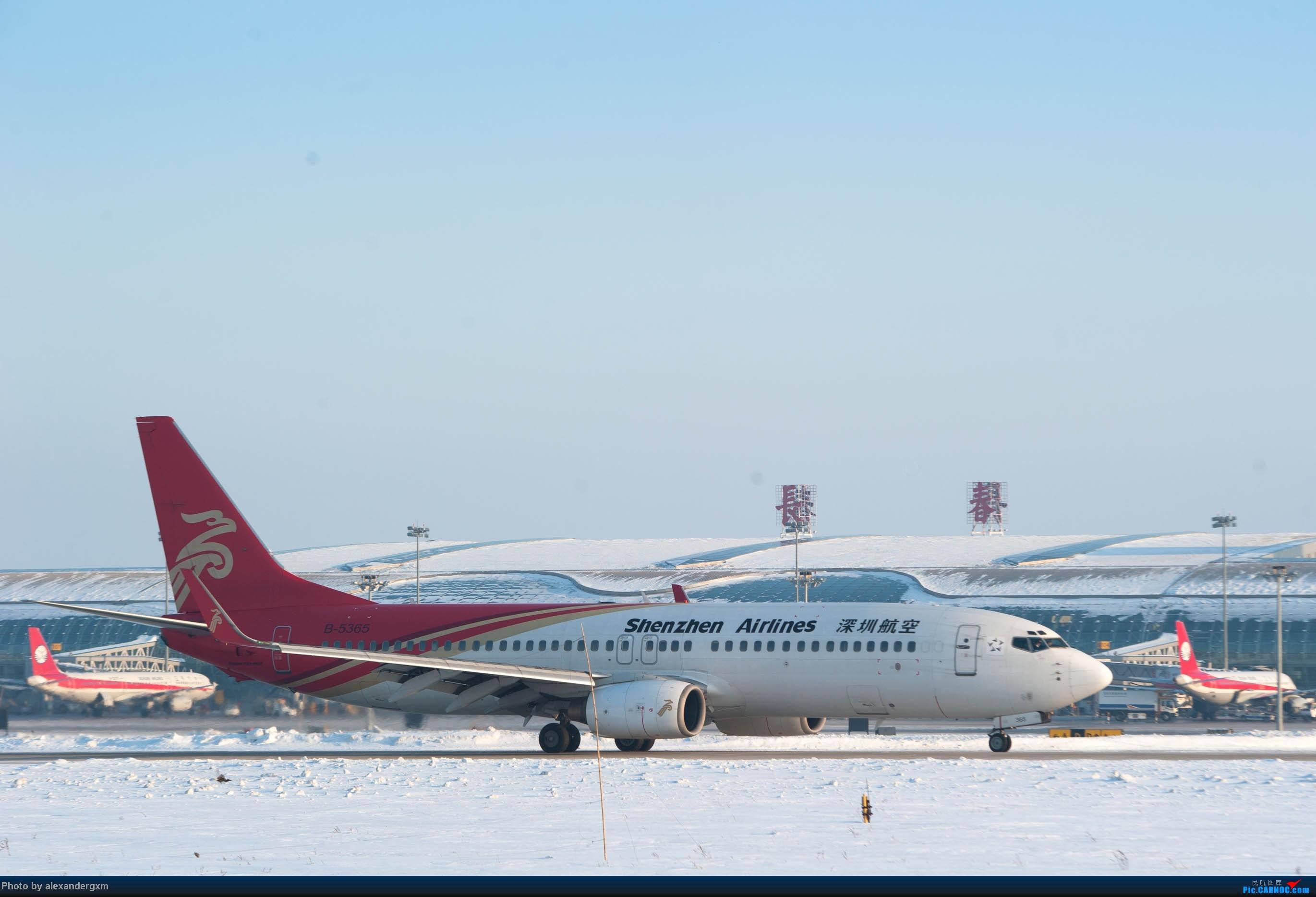 Re:[原创]【CGQ】今天零下30多度好像…… BOEING 737-800 B-5365 中国长春龙嘉国际机场