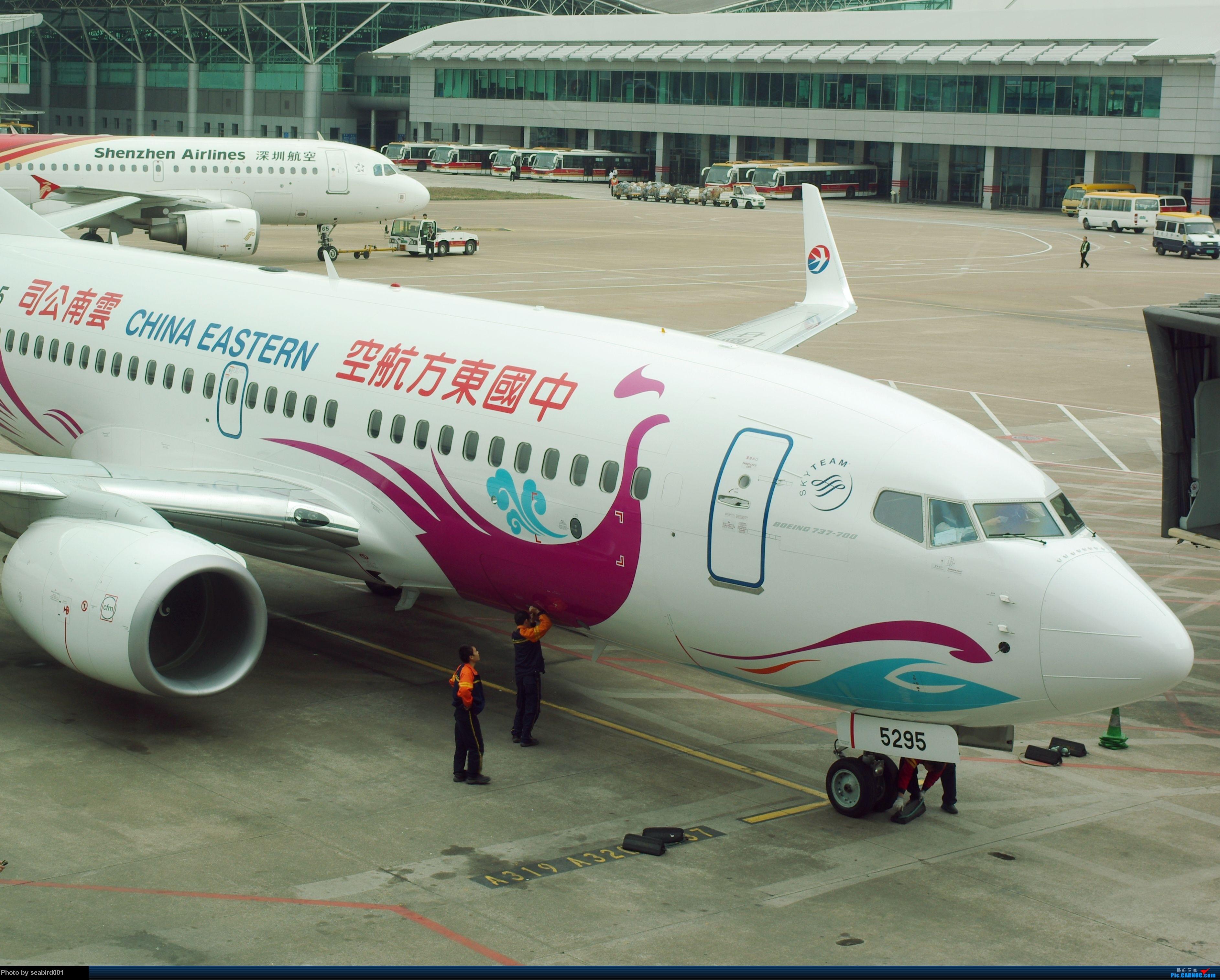 Re:[原创](深圳飞友会)12月29日飞成都前抓到的,有正合时宜的熊猫机,深圳星星,云南孔雀。 BOEING 737-700 B-5295 中国深圳宝安机场