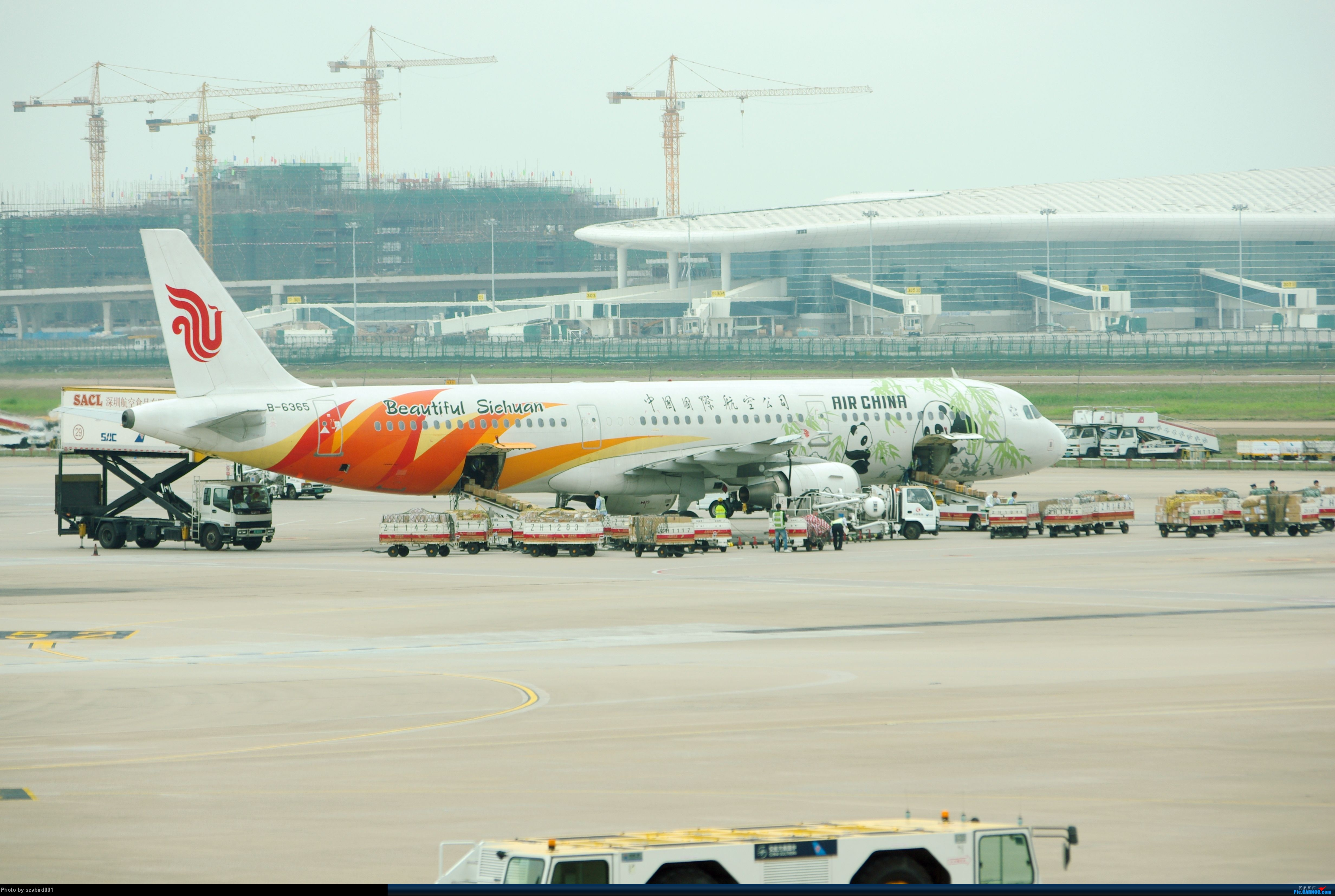 Re:[原创](深圳飞友会)12月29日飞成都前抓到的,有正合时宜的熊猫机,深圳星星,云南孔雀。 AIRBUS A321-200 B-6365 中国深圳宝安机场