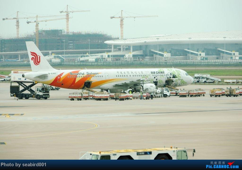 Re:[原创]](深圳飞友会)12月29日飞成都前抓到的,有正合时宜的熊猫机,深圳星星,云南孔雀。 AIRBUS A321-200 B-6365 中国深圳宝安机场