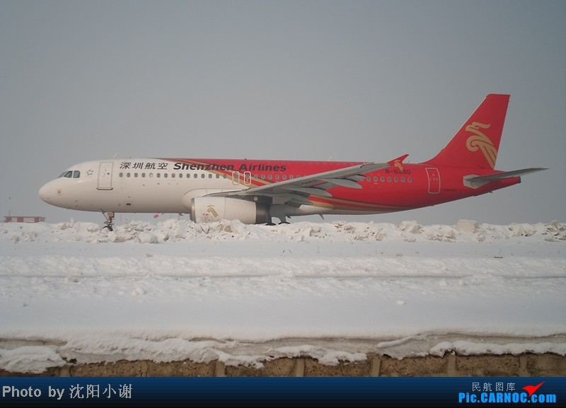 Re:[原创]2013年1月13日,沈阳桃仙机场,大雾,酷航777,南航330,韩航747. AIRBUS A320-200 B-6650 中国沈阳桃仙机场