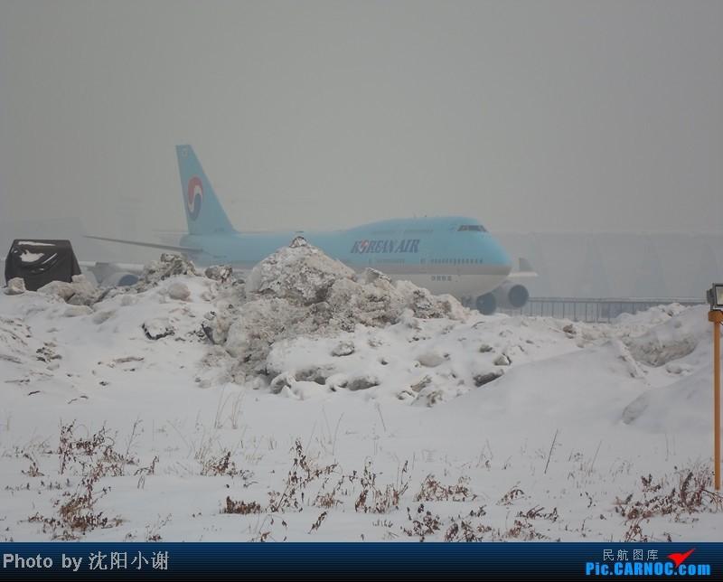 Re:[原创]2013年1月13日,沈阳桃仙机场,大雾,酷航777,南航330,韩航747. BOEING 747-400 HL-7404 中国沈阳桃仙机场