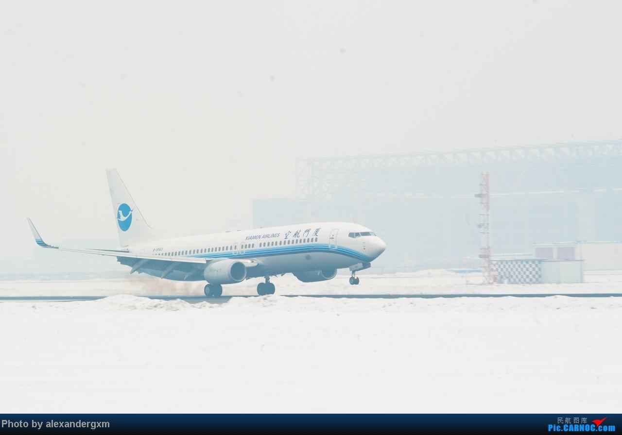 Re:[原创]【SHE】1.20日拍机,雾霾天气能见度低。 BOEING 737-800 B-5563 中国沈阳桃仙机场