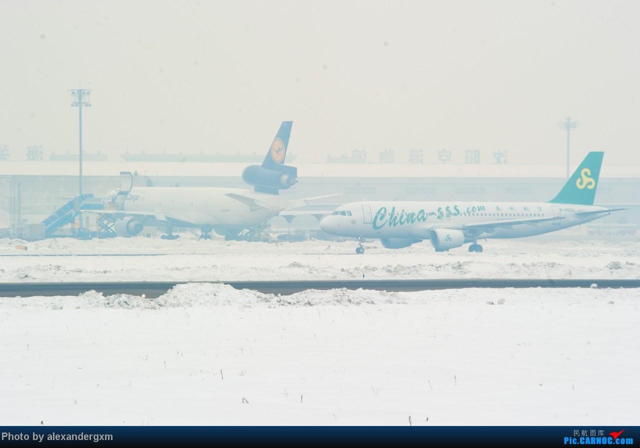 Re:[原创]【SHE】1.20日拍机,雾霾天气能见度低。 MD-11  中国沈阳桃仙机场