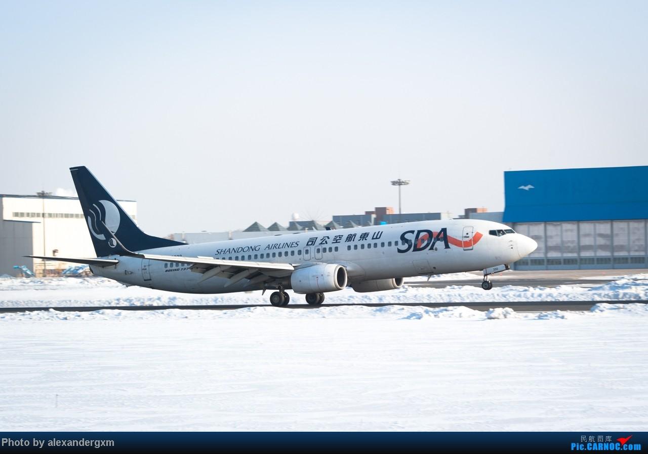 [原创]【SHE】雪后出晴,日常拍机。汉莎A340等 BOEING 737-800 B-5332 中国沈阳桃仙机场