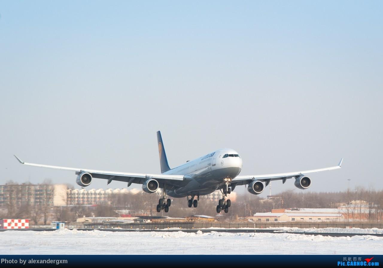 Re:[原创]【SHE】雪后出晴,日常拍机。汉莎A340等 A340-300  中国沈阳桃仙机场