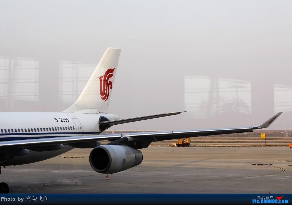 [原创]PVG:凤凰的6架A340,一天里就拍到了4架 AIRBUS A340-300 B-2389 中国上海浦东机场