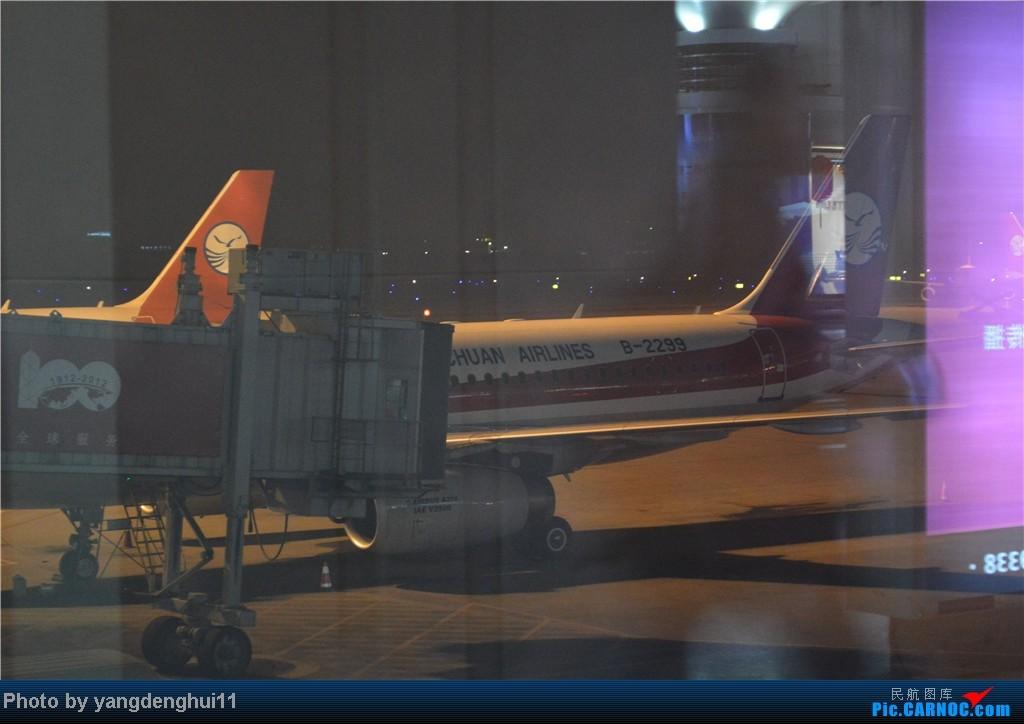 Re:[原创]过年回老家!!!CTU-PVG-上海虹桥站-动车D3103到温州苍南       本人是12岁的小朋友,但天生喜欢飞机,就发了本帖,希望大家谅解拍的不好的地方。 AIRBUS A319-100 B-2299 中国成都双流机场