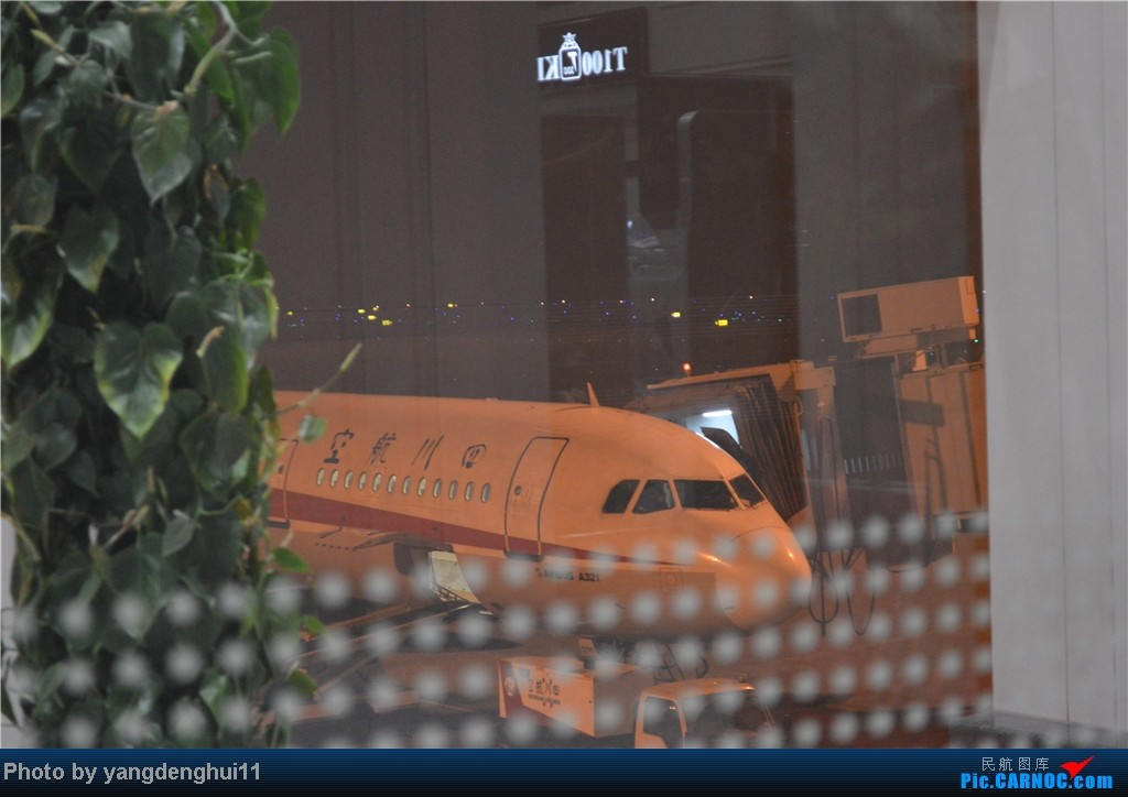 Re:[原创]过年回老家!!!CTU-PVG-上海虹桥站-动车D3103到温州苍南       本人是12岁的小朋友,但天生喜欢飞机,就发了本帖,希望大家谅解拍的不好的地方。 A321  中国成都双流机场