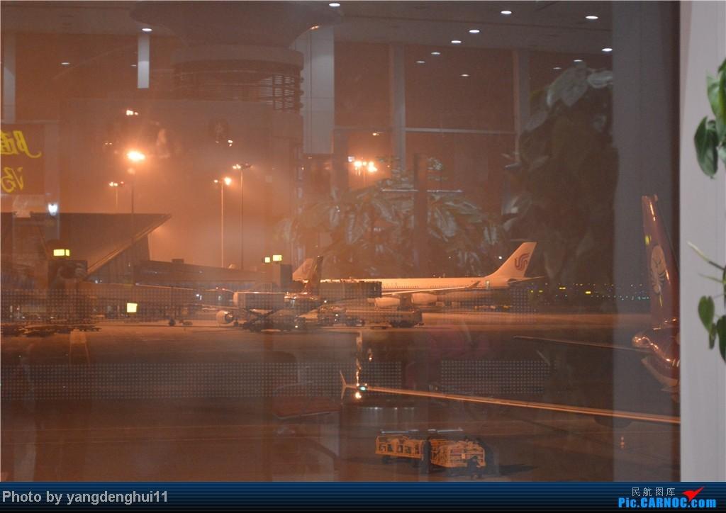 Re:[原创]过年回老家!!!CTU-PVG-上海虹桥站-动车D3103到温州苍南       本人是12岁的小朋友,但天生喜欢飞机,就发了本帖,希望大家谅解拍的不好的地方。 AIRBUS A340-300  中国成都双流机场