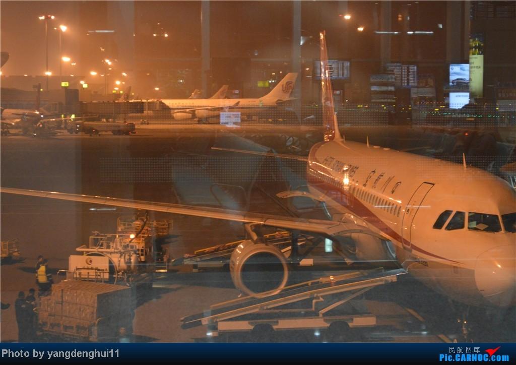 Re:[原创]过年回老家!!!CTU-PVG-上海虹桥站-动车D3103到温州苍南       本人是12岁的小朋友,但天生喜欢飞机,就发了本帖,希望大家谅解拍的不好的地方。 AIRBUS A321-200 B-2370 中国成都双流机场