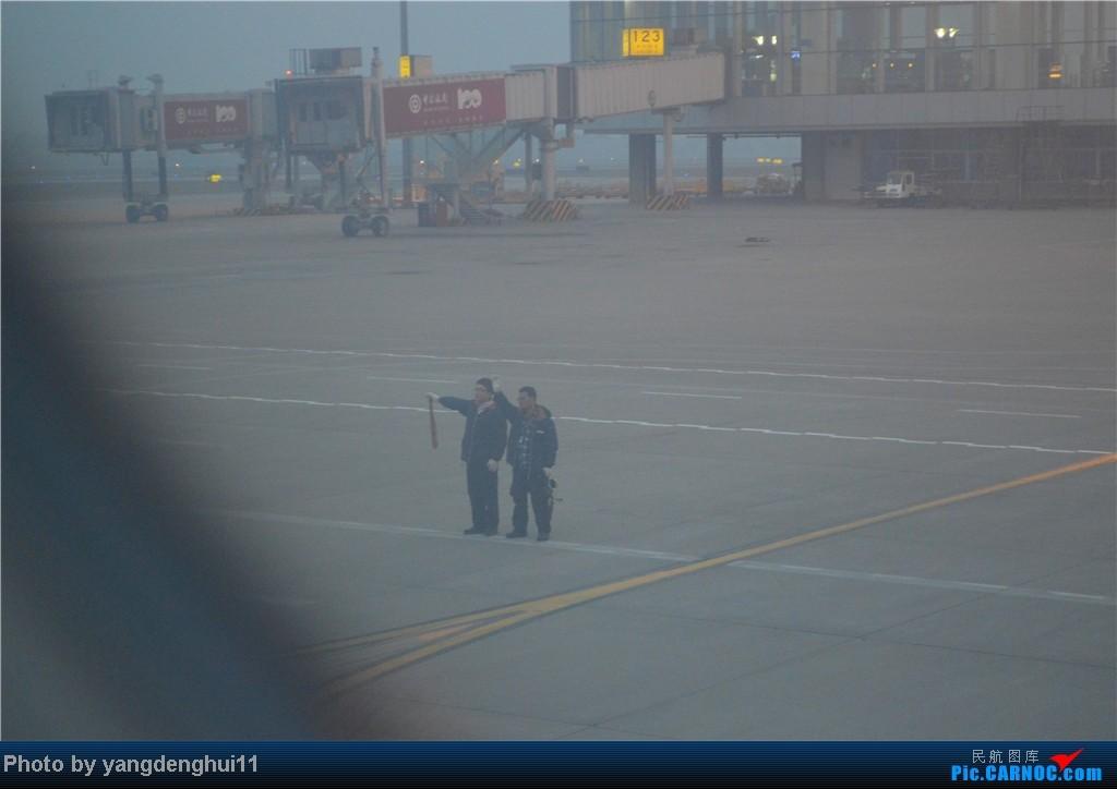 Re:[原创]过年回老家!!!CTU-PVG-上海虹桥站-动车D3103到温州苍南       本人是12岁的小朋友,但天生喜欢飞机,就发了本帖,希望大家谅解拍的不好的地方。     地面服务
