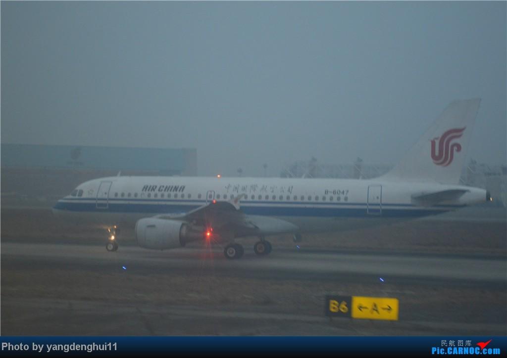 Re:[原创]过年回老家!!!CTU-PVG-上海虹桥站-动车D3103到温州苍南       本人是12岁的小朋友,但天生喜欢飞机,就发了本帖,希望大家谅解拍的不好的地方。 AIRBUS A319-100 B-6047 中国成都双流机场