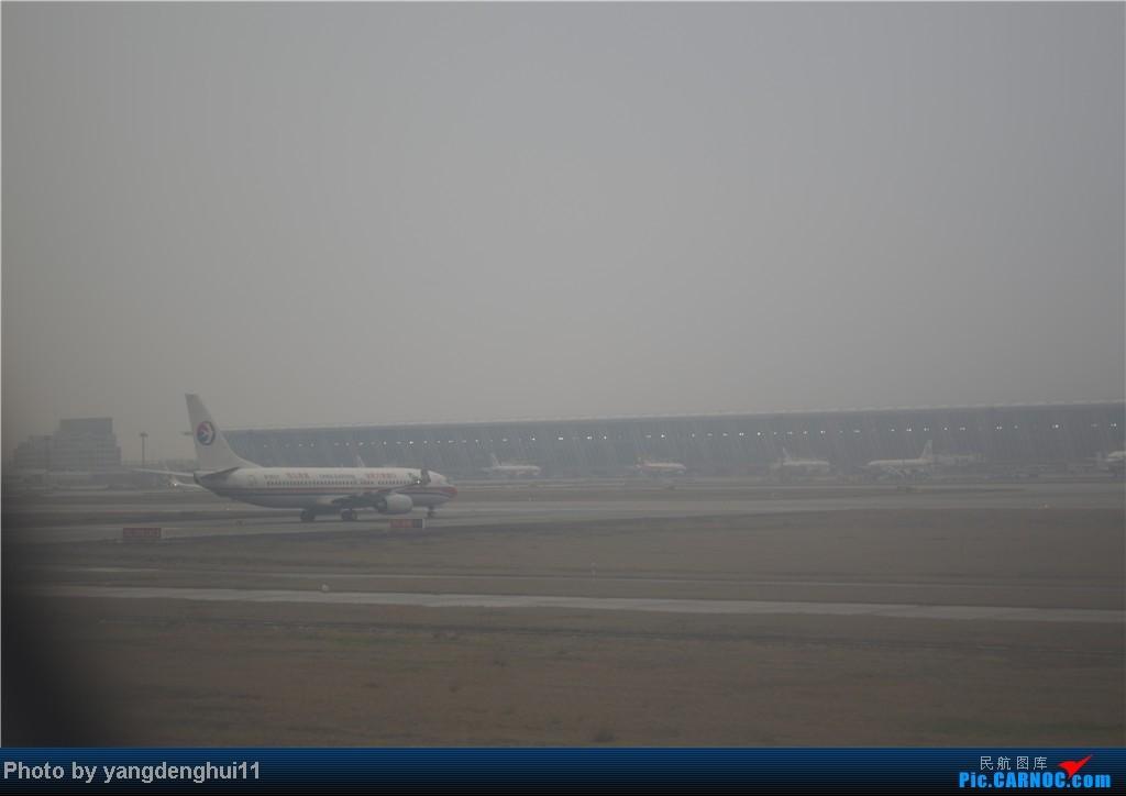 Re:[原创]过年回老家!!!CTU-PVG-上海虹桥站-动车D3103到温州苍南       本人是12岁的小朋友,但天生喜欢飞机,就发了本帖,希望大家谅解拍的不好的地方。 BOEING 737-800  中国上海浦东机场