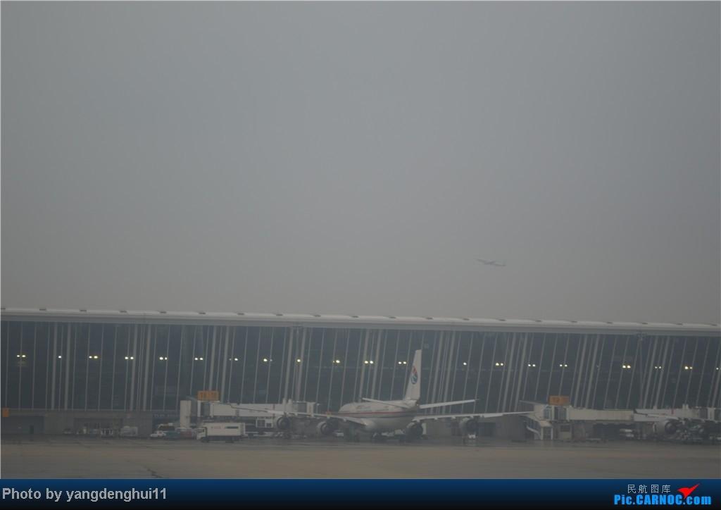 Re:[原创]过年回老家!!!CTU-PVG-上海虹桥站-动车D3103到温州苍南       本人是12岁的小朋友,但天生喜欢飞机,就发了本帖,希望大家谅解拍的不好的地方。 A340-300  中国上海浦东机场
