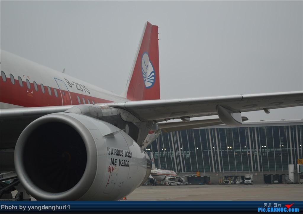 Re:[原创]过年回老家!!!CTU-PVG-上海虹桥站-动车D3103到温州苍南       本人是12岁的小朋友,但天生喜欢飞机,就发了本帖,希望大家谅解拍的不好的地方。 AIRBUS A321-200 B-2370 中国上海浦东机场