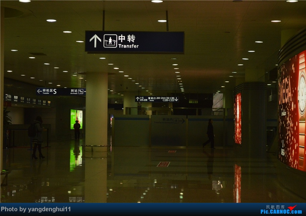 Re:[原创]过年回老家!!!CTU-PVG-上海虹桥站-动车D3103到温州苍南       本人是12岁的小朋友,但天生喜欢飞机,就发了本帖,希望大家谅解拍的不好的地方。    中国上海浦东机场