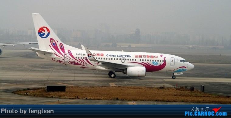 Re:[原创]【成都飞友会】部分记录20130206的CTU联邦快递MD11国泰 74F和国航77W等 BOEING 737-700 B-5295 中国成都双流机场