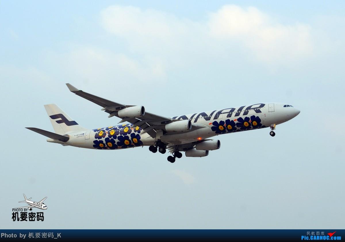 [原创]烂天也要来拍一次芬航花机。 AIRBUS A340-300 OH-LQD 中国北京首都机场