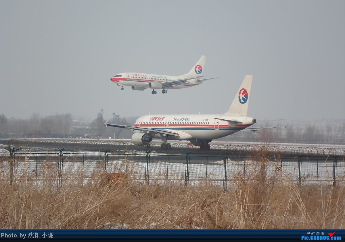 Re:[原创]{SHE}2013年2月13日,春节后第一贴。国航牡丹彩绘,附带机场飞友合影。 AIRBUS A320-200 B-6805 中国沈阳桃仙机场