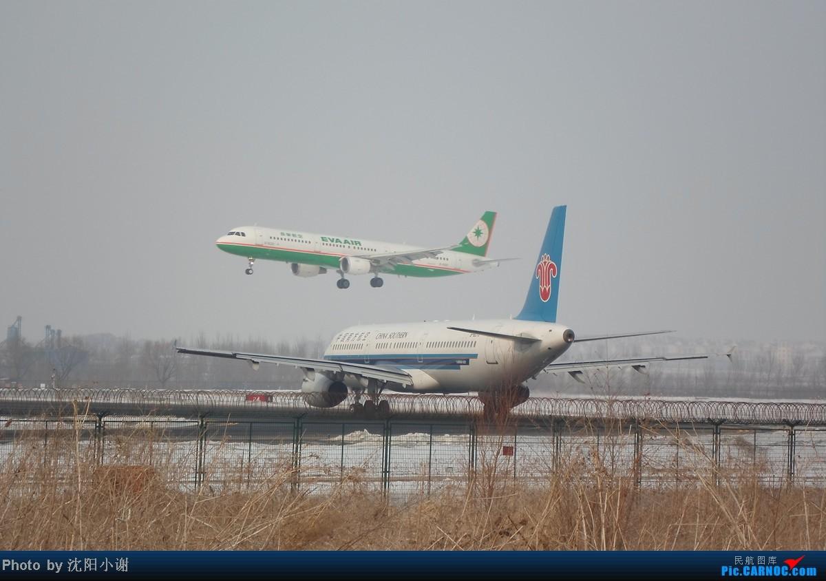 Re:[原创]{SHE}2013年2月13日,春节后第一贴。国航牡丹彩绘,附带机场飞友合影。 AIRBUS A321-200 B-6270 中国沈阳桃仙机场