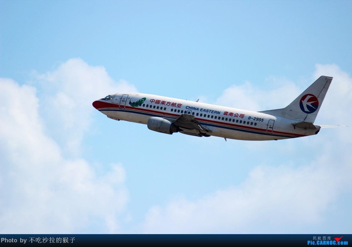 Re:[原创]【海南飞友会】【猴子出品】小岛寒假拍机汇总~在祖国的最南边用生命拍机~SYX篇~ BOEING 737-300 B-2955 中国三亚凤凰机场