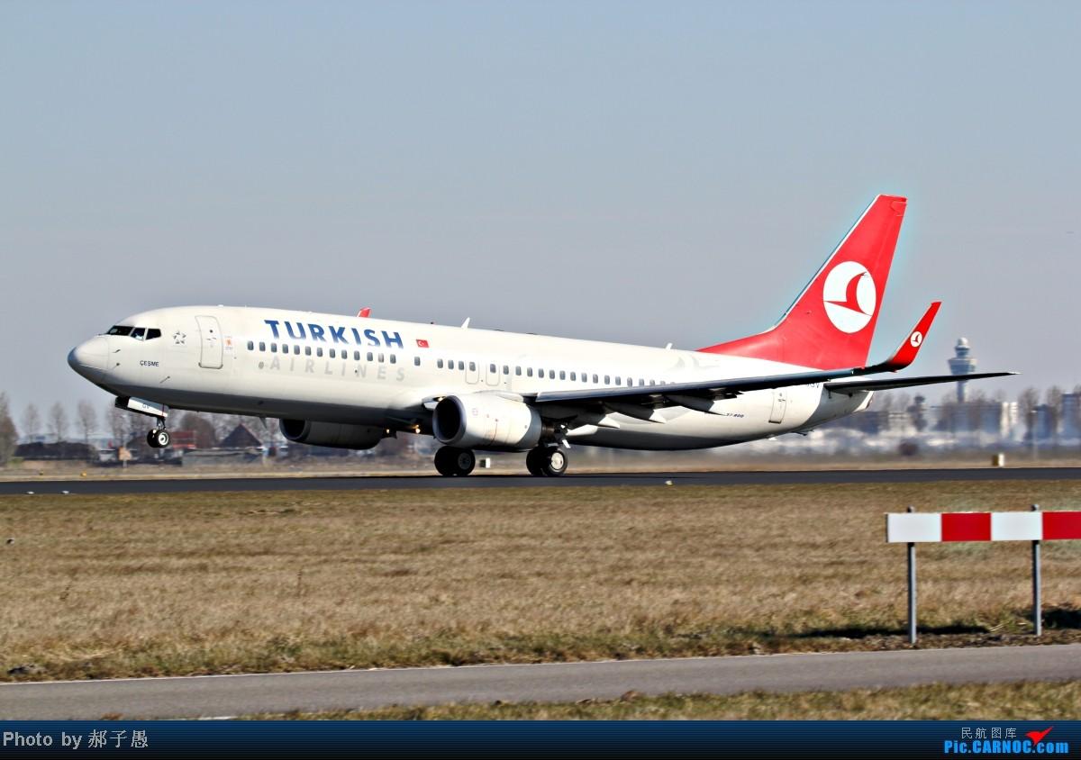 Re:[原创]【超长游记】【荷兰自驾游】阿姆斯特丹机场拍机+欧洲风光(A380、MD-11) BOEING 737-800 TC-JGV 荷兰荷兰阿姆斯特丹斯史基浦(西霍普)机场