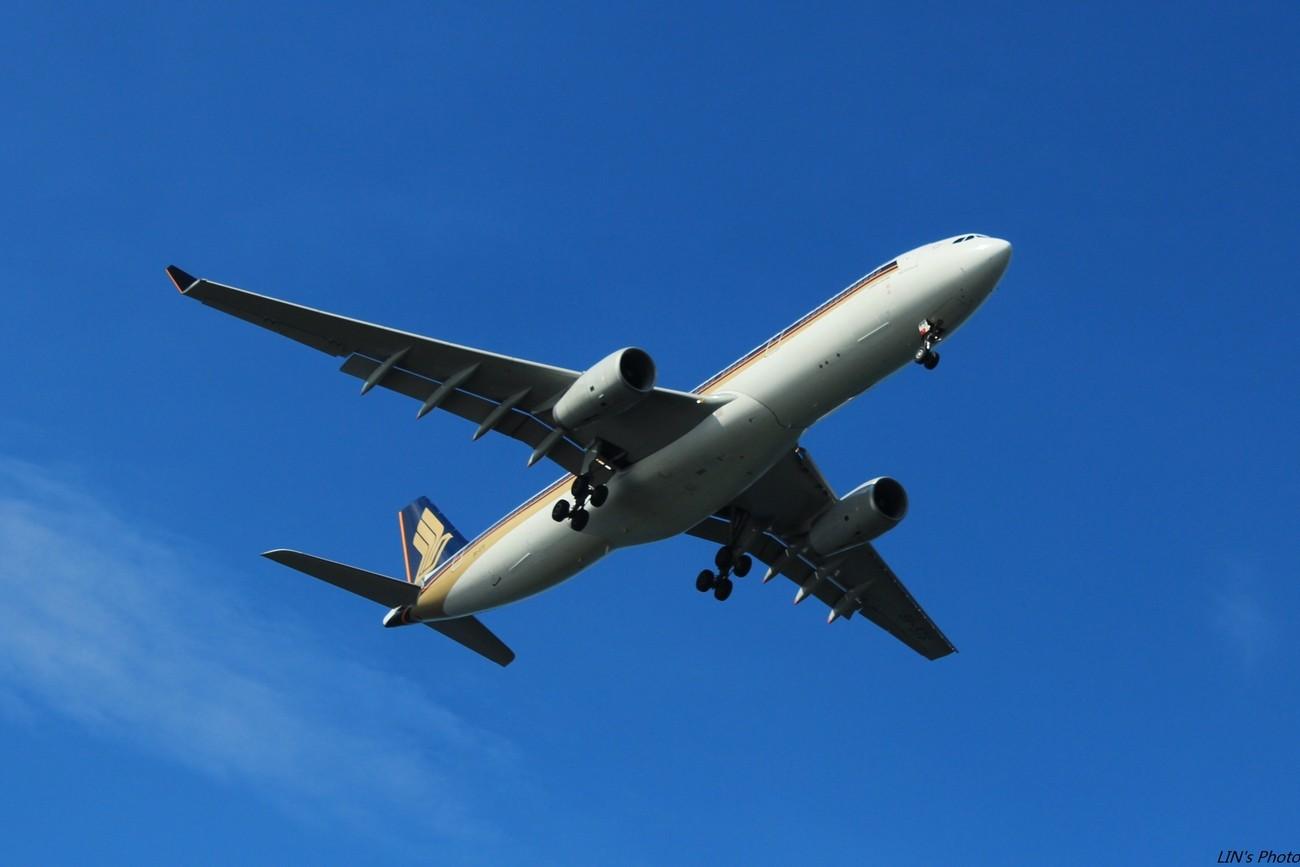 Re:[原创]【打机在SIN】终于找到樟宜机场传说中的那个神仙位~光线巨赞~樟宜有多少好货就不多说啦! AIRBUS A330-300  新加坡樟宜机场