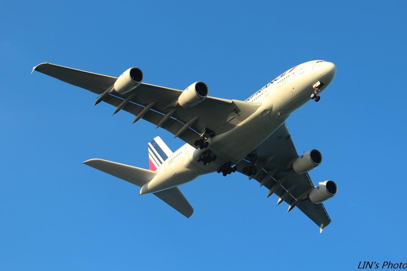 Re:[原创]【打机在SIN】终于找到樟宜机场传说中的那个神仙位~光线巨赞~樟宜有多少好货就不多说啦! AIRBUS A380 F-HPJE 新加坡樟宜机场