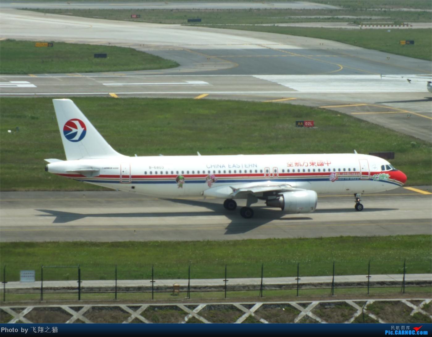 Re:[原创]烈日当空,坚持拍机(南航777F,332,大运号,花博号等) AIRBUS A320-200 B-6803 重庆江北国际机场