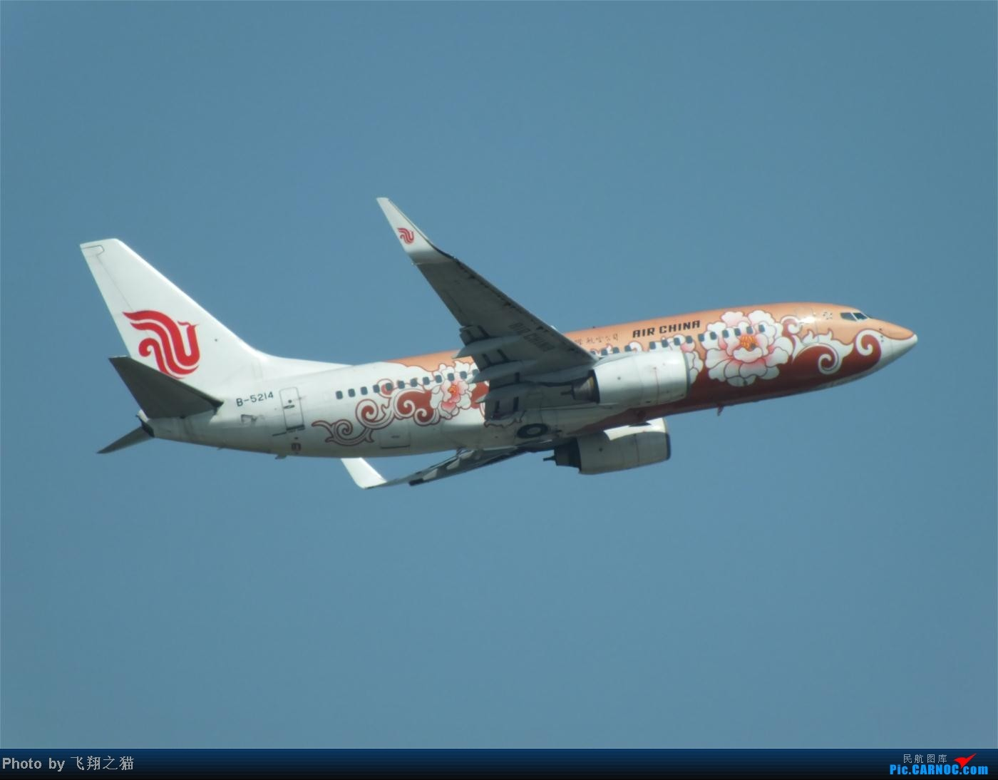 Re:[原创]烈日当空,坚持拍机(南航777F,332,大运号,花博号等) BOEING 737-700 B-5214 重庆江北国际机场