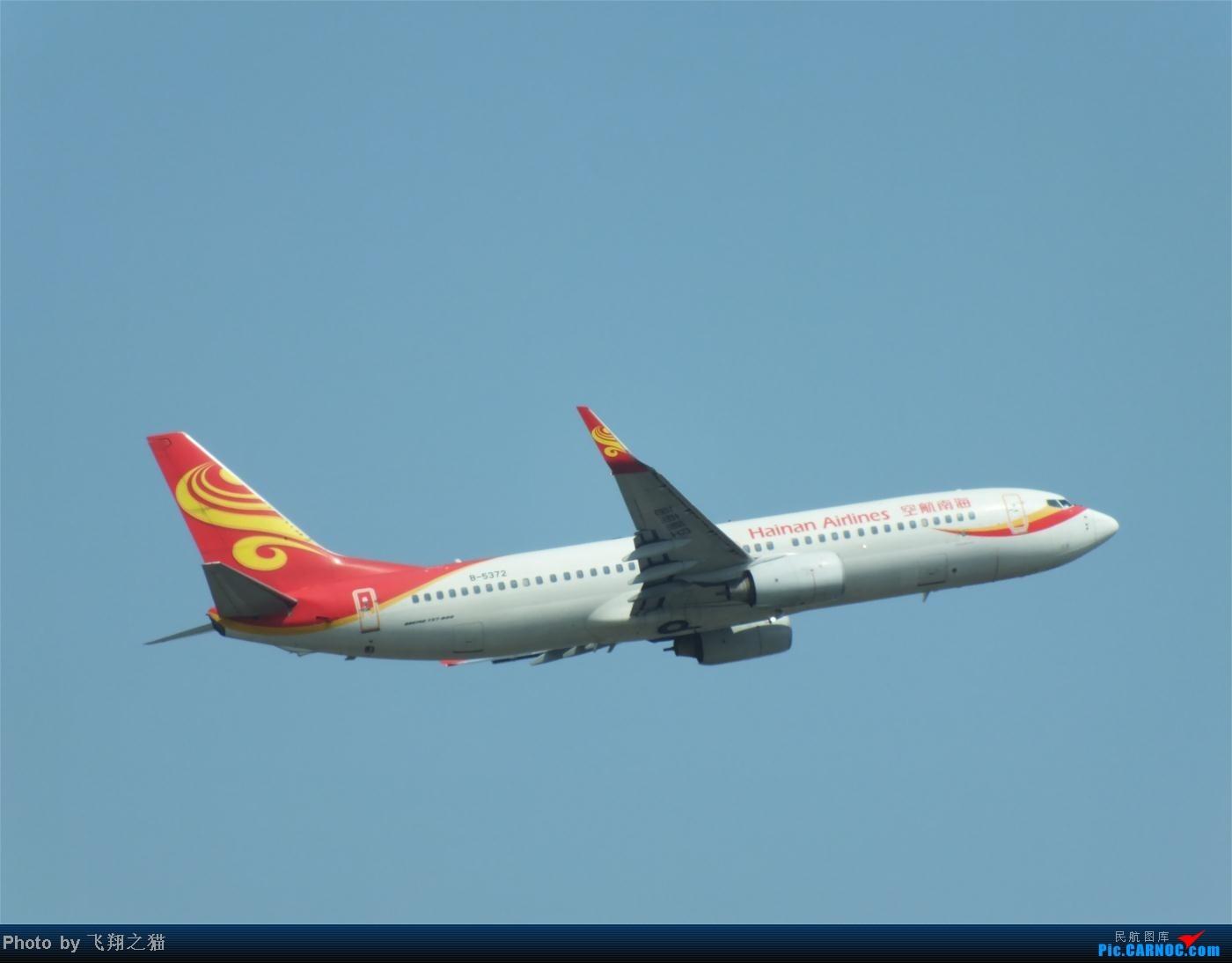Re:[原创]烈日当空,坚持拍机(南航777F,332,大运号,花博号等) BOEING 737-800 B-5372 重庆江北国际机场