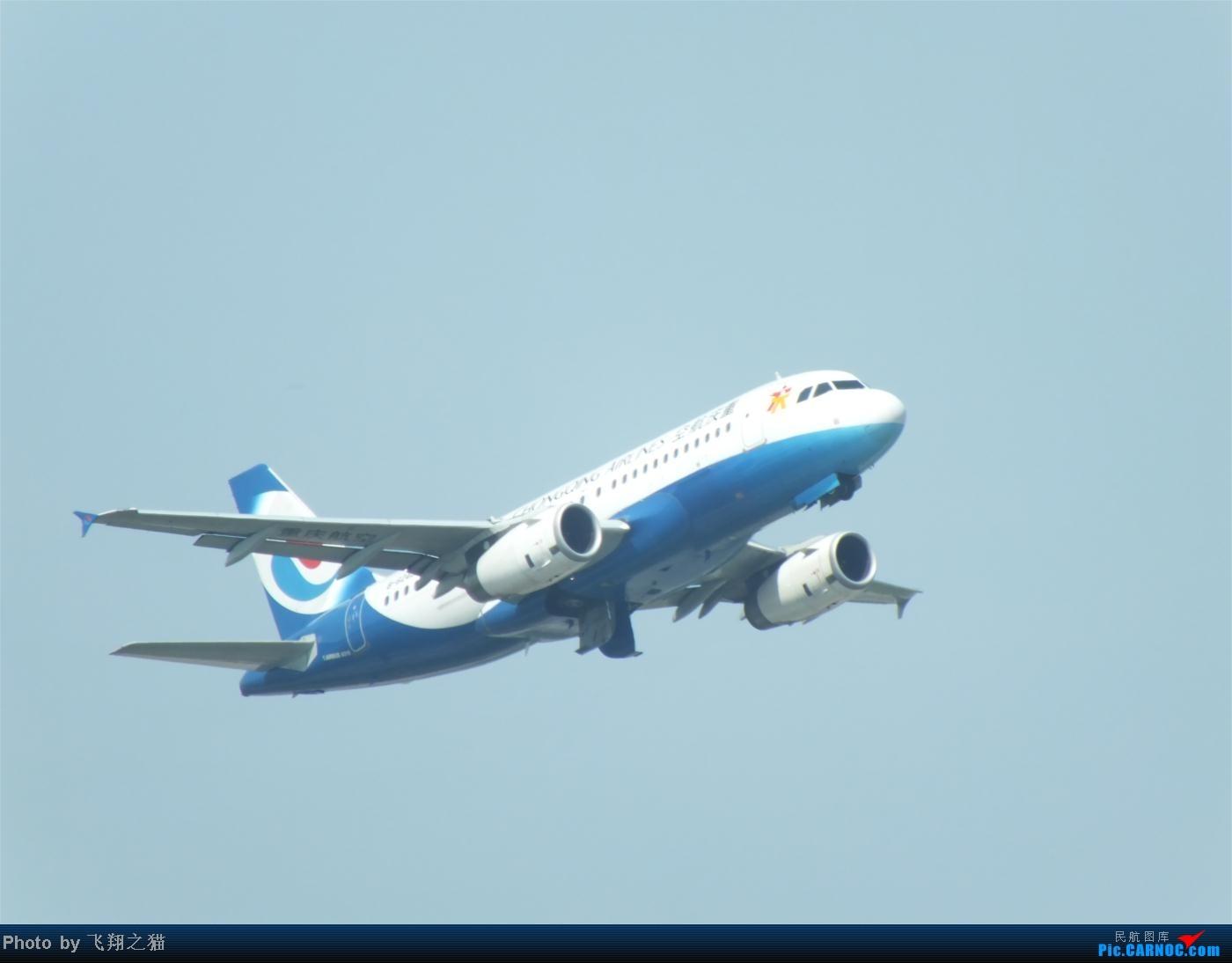 Re:[原创]烈日当空,坚持拍机(南航777F,332,大运号,花博号等) AIRBUS A319 B-6248 重庆江北国际机场
