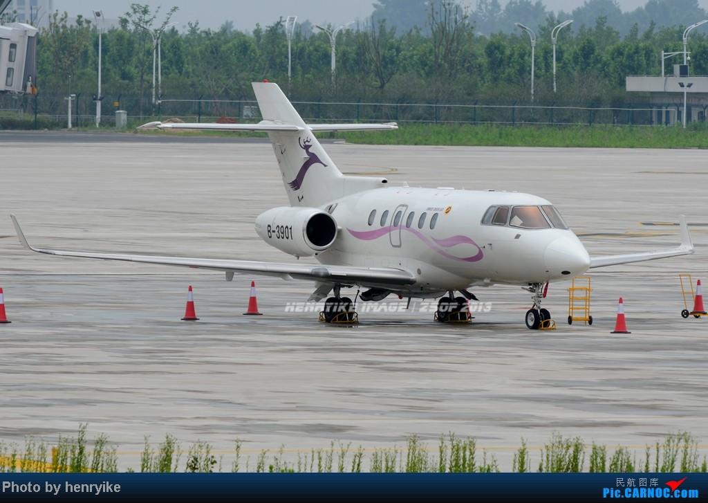 [原创]【骆幕迎新】新桥机场运行第一天,努力寻找各种拍机位 HAWKER 800XP B-3901 中国合肥新桥机场