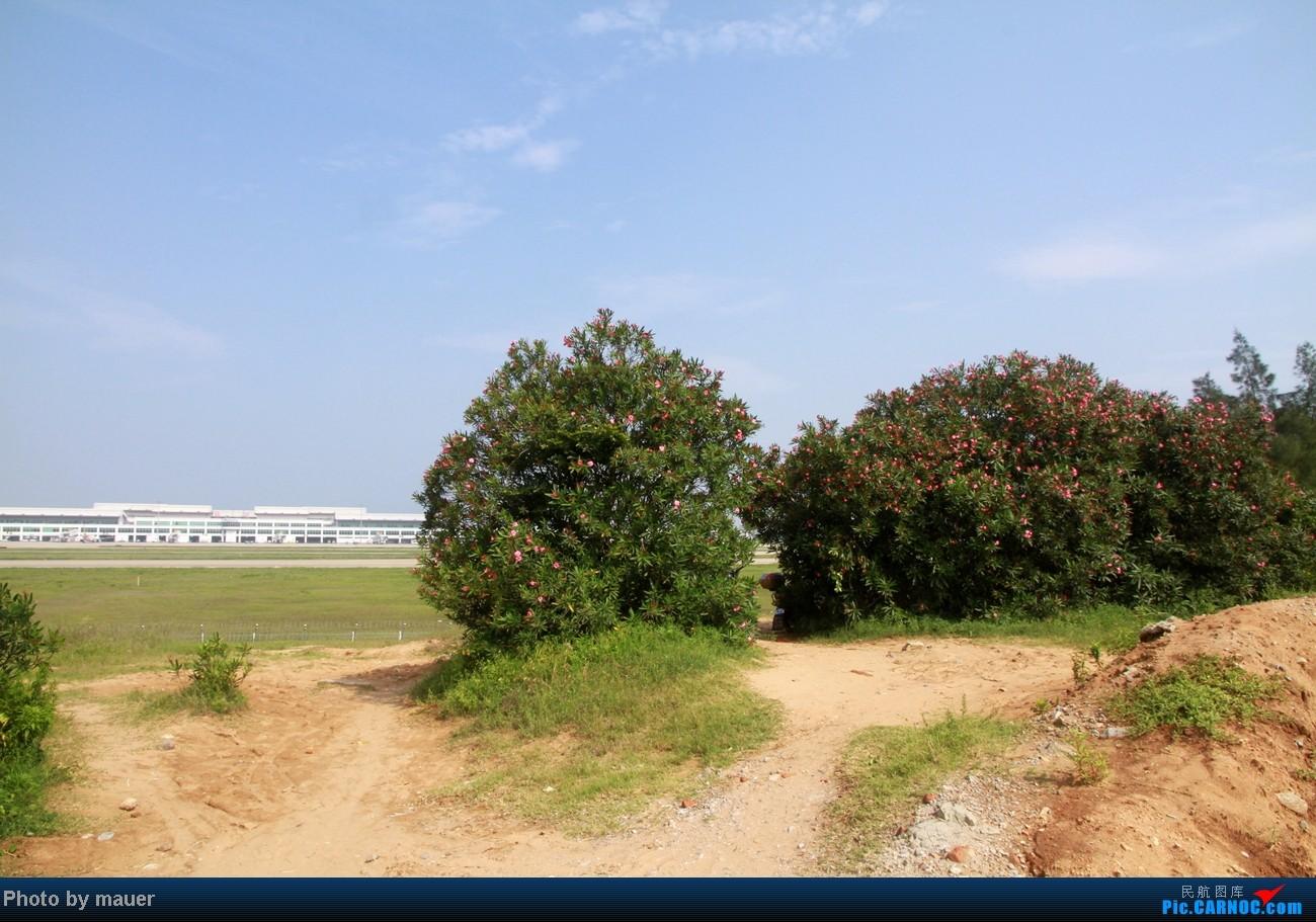[原创]大热天 去拍机    中国福州长乐机场