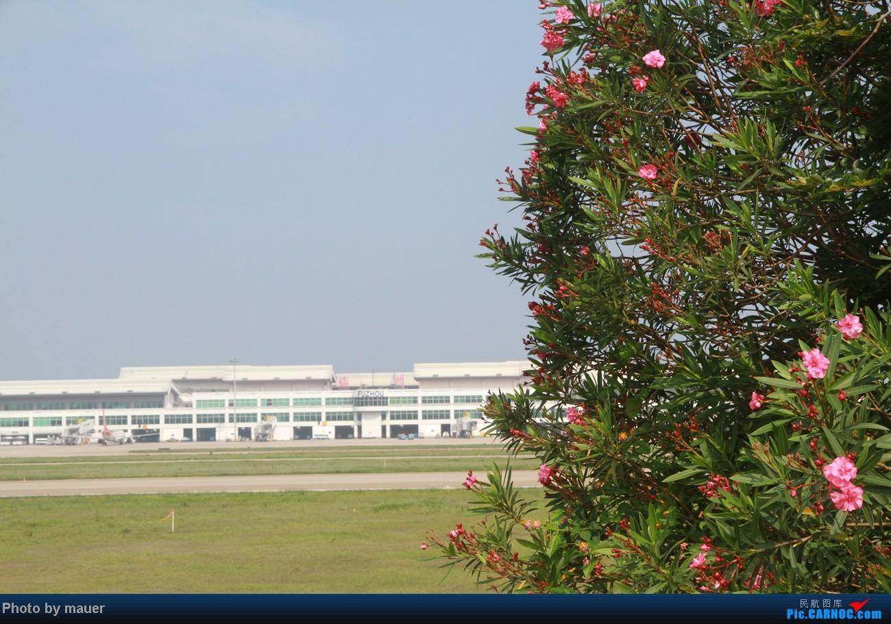 Re:[原创]大热天 去拍机    中国福州长乐机场