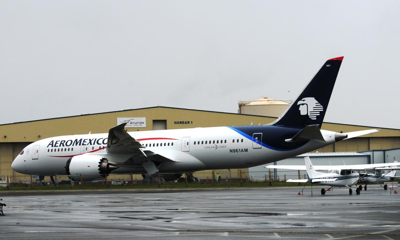 Re:海航、印度航空的787 787-8 N961AM 美国波音场国王郡立机场
