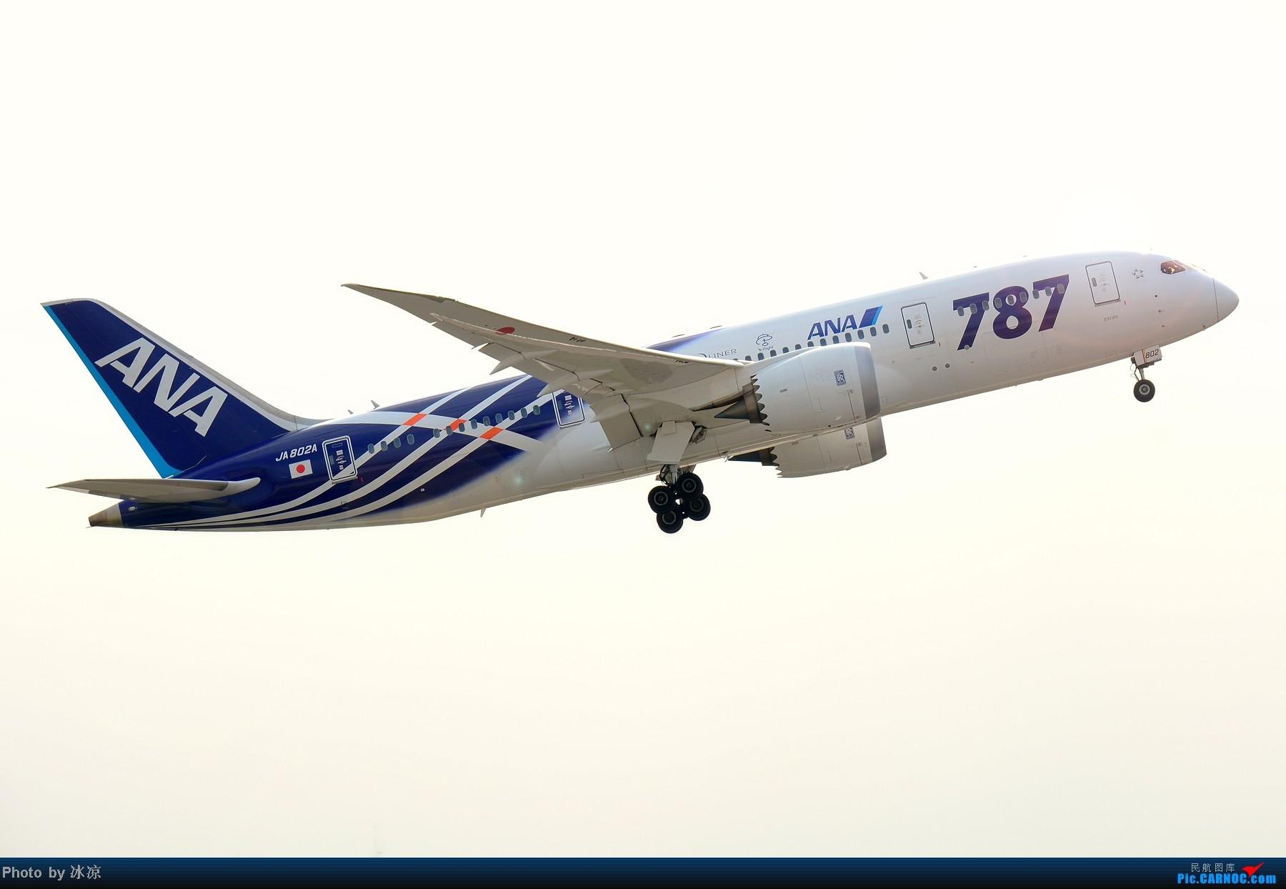 [原创]高清无码大图,全日空787彩绘! BOEING 787-8 JA802A 中国北京首都机场
