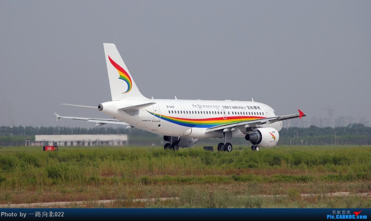 [原创]**TSN**TSN** 高原雄鹰 在这个地方没要是没有点便利条件还真拍不到它    中国天津滨海机场