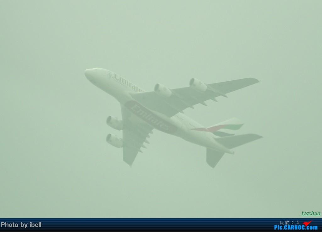 Re:[原创][20130628 SIN]新加坡樟宜机场随拍 AIRBUS A380  新加坡樟宜机场