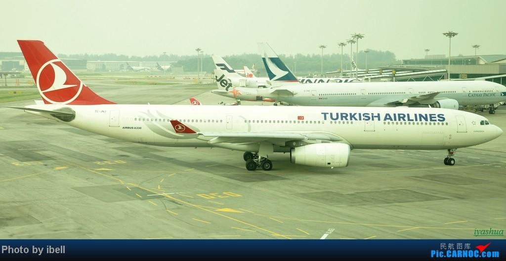 Re:[原创][20130628 SIN]新加坡樟宜机场随拍-看图猜航空公司(12楼),猜对奖飞机! AIRBUS A330-300 TC-JNJ 新加坡樟宜机场